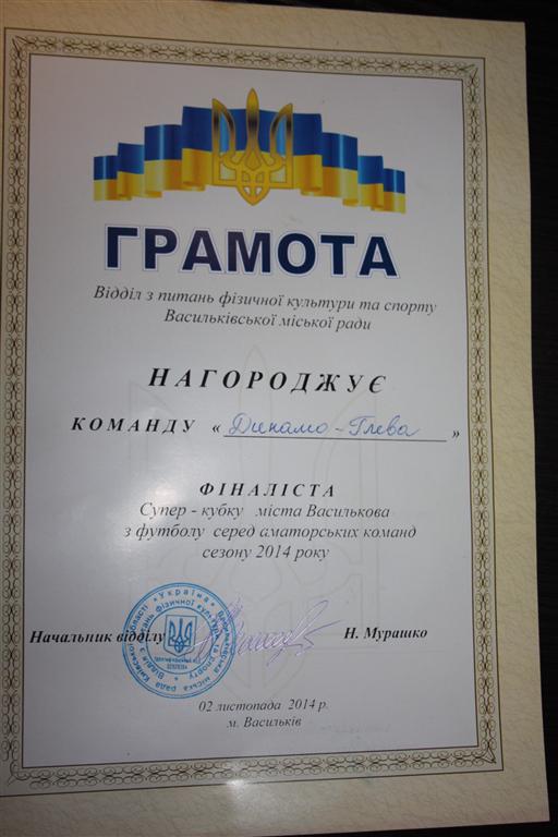 Финалист Суперкубка города Василькова по футболу 2014 года.